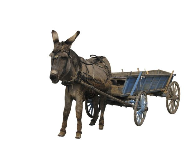 Of horses and carts - ruggedness and reliability in tablet PC selection in the utilities sector