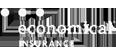 insurance-company-_0001s_0004_economical