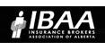 insurance-company-ibaa