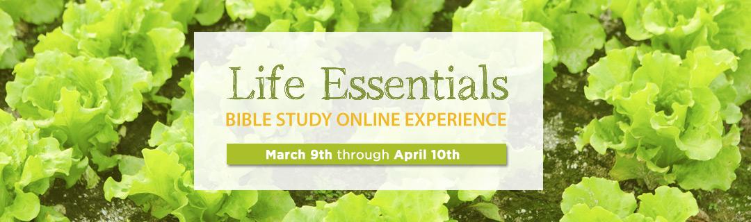 Bible Devotionals   Online Bible Studies   NIV Bible ...