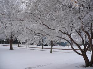 winterizemotorhome