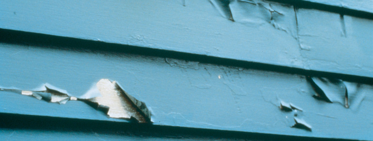 Exterior House Painting Problems