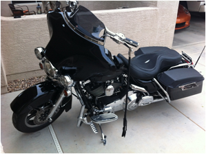 This stingray leather seat makes a stylish, and durable, addition to the bagger-style motorcycle.