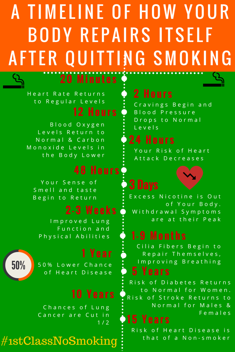 quitting smoking: a timeline of how your body repairs itself, Skeleton