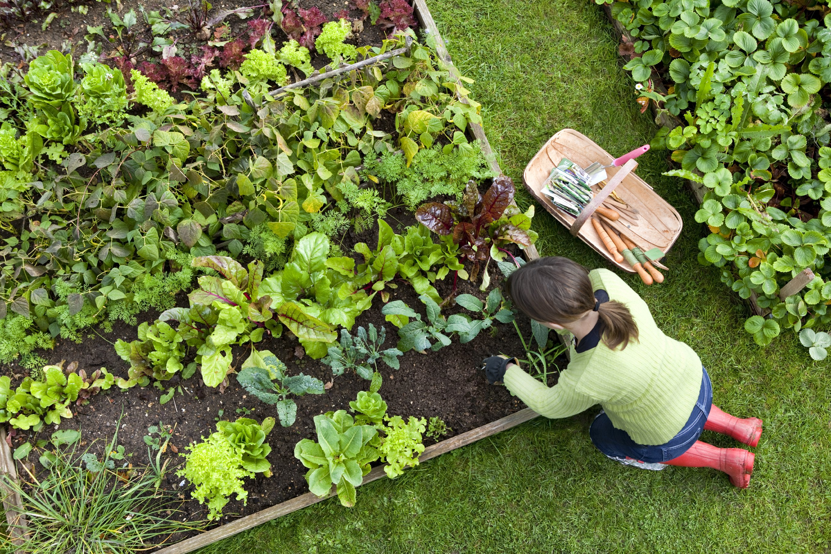 gardening-with-copd.jpg