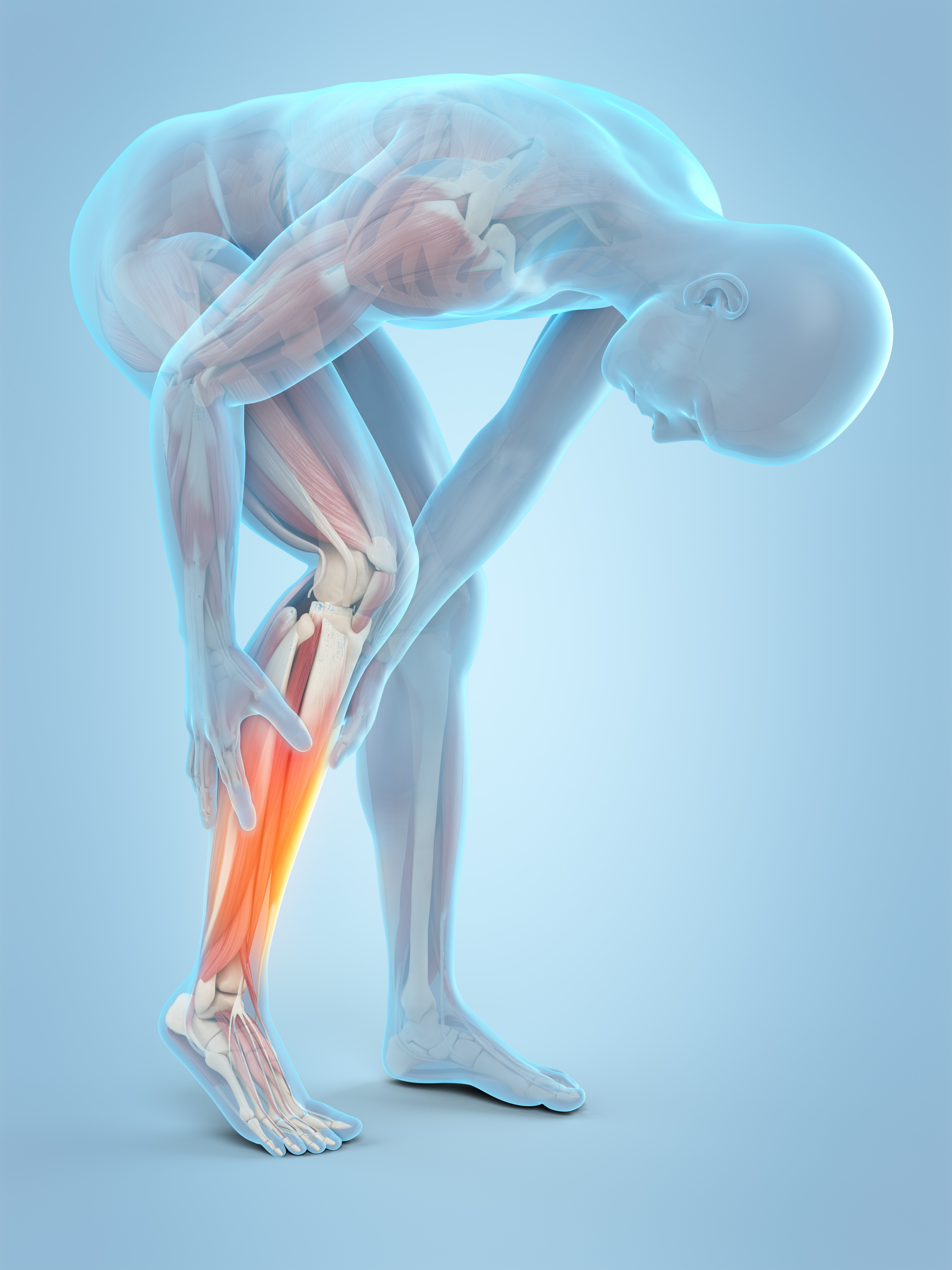 leg cramp2.jpg