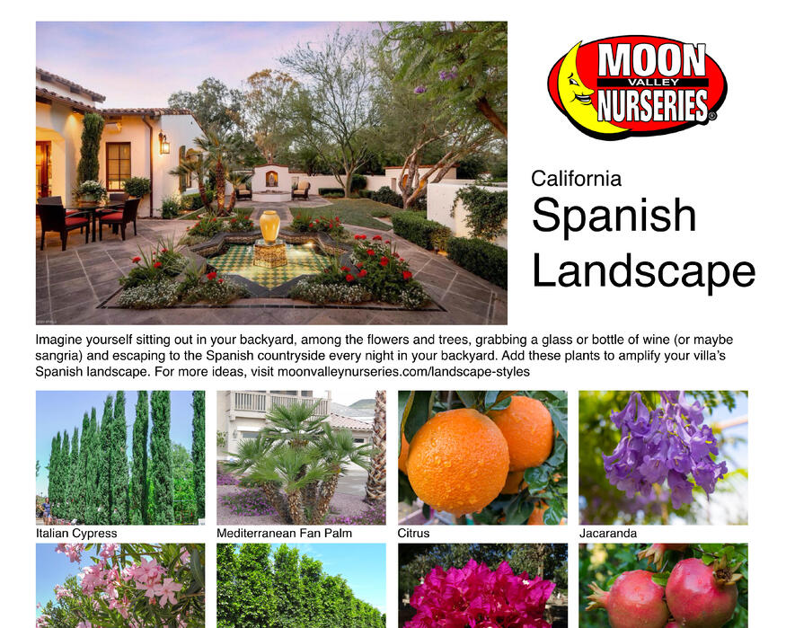 California landing page images2