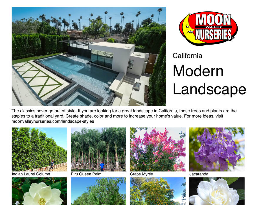 California landing page images4