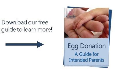 Become a parent through egg donation