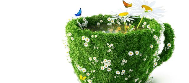La conciencia de una vida natural... ¿y orgánica?