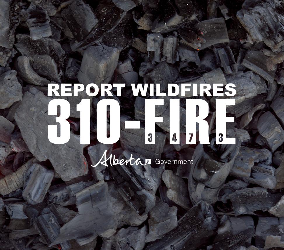 310fire_campfire