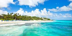 5 Ways to Visit Barbados (Without Leaving Your Home)