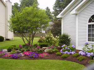 5 landscape edging options for your home for Landscape designs for front of house