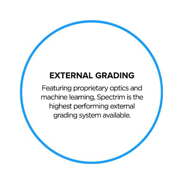 GRADING-SYSTEM-back.png