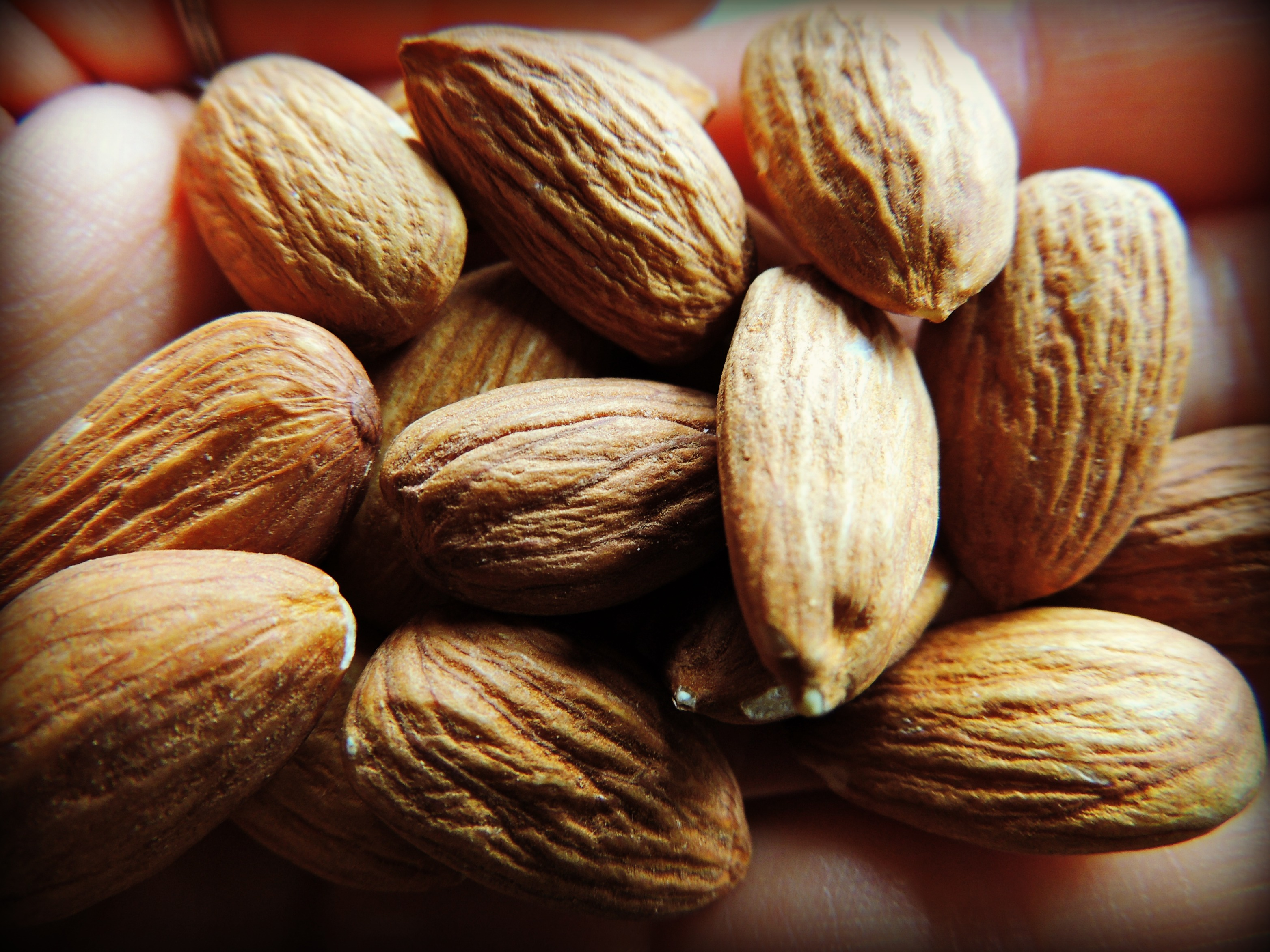 Is Soaking Nuts Necessary & How To Properly Soak Your ...