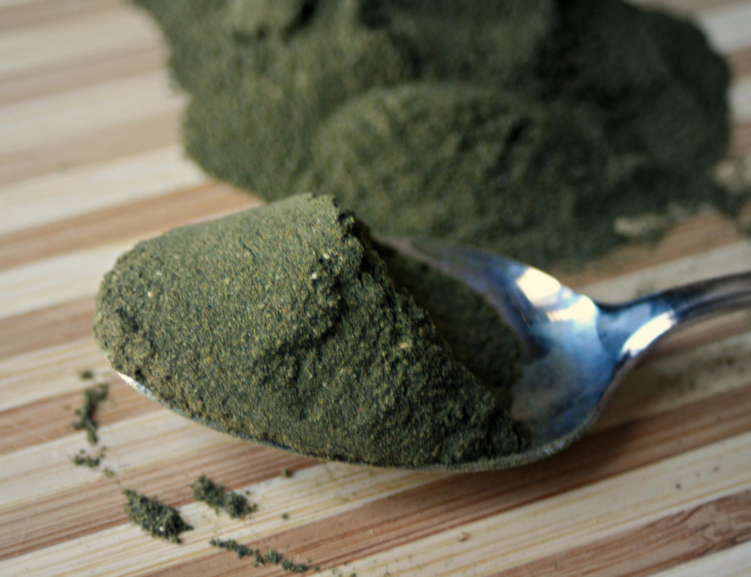Chlorella Vs Alga Spirulina Which Algae Is Best