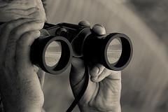data-center-consultant-cio-dreams-of-finding-1
