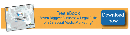 free eBook download business and legal risks of B2B social media marketing
