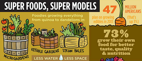 Garden Trends For 2014  From The Garden Media Group  Infographic    Today s Garden Center