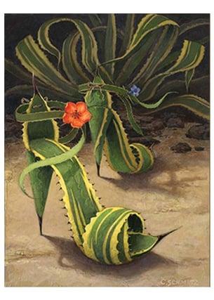 plant heels - Copy