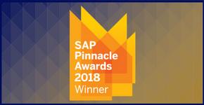 Navigator Was Awarded the 2018 Pinnacle Award