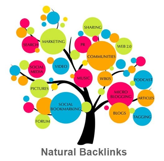 Image result for seo backlinks