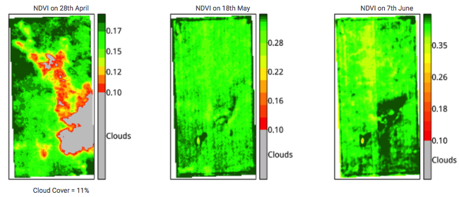 Example_Field_Images_Sat_NDVI.png