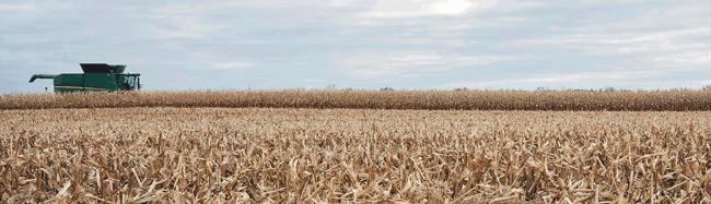 story_1388x400_jd_combine_harvest_corn_10-18