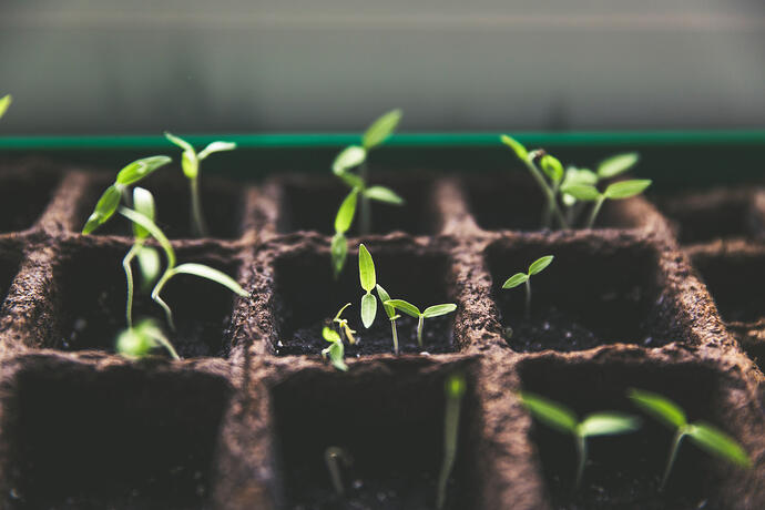 Kickstart Your Startup Marketing With These 7 Growth Hacks