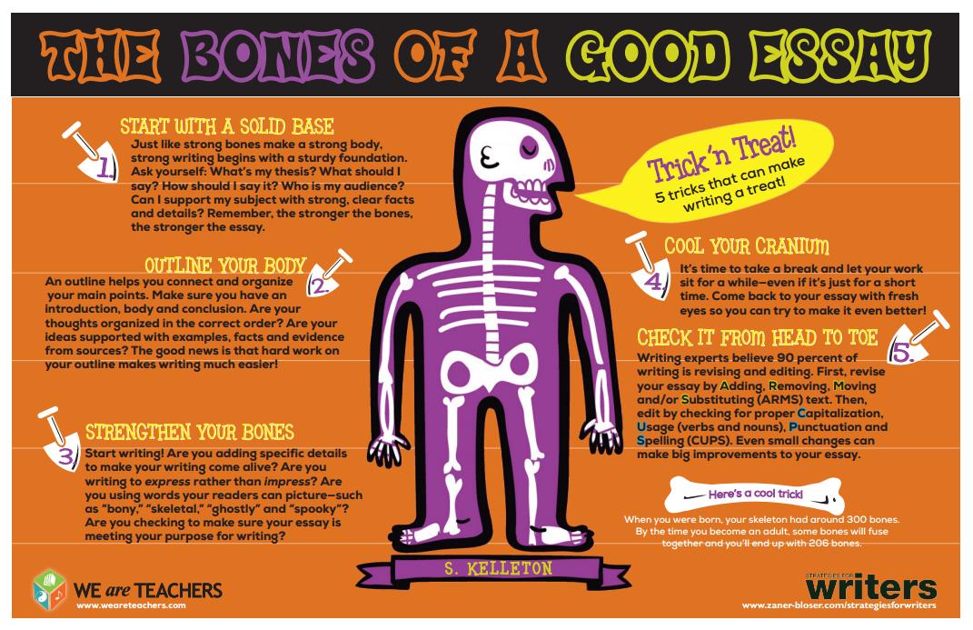 essay bones