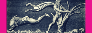 Mythology and dolphins