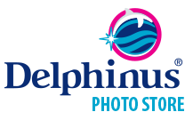 photo-delphinus-logo-footter.png