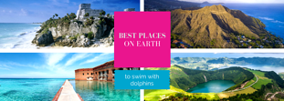 Top 7 places to swim with dolphins