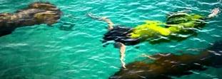 ¡Planea tus vacaciones ecoturísticas en el Caribe!