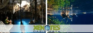 Xenotes: misticismo, naturaleza y aventura en esta experiencia