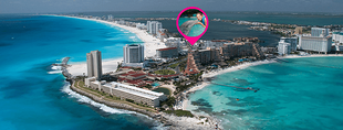 Swim with dolphins at the Hotel Zone of Cancun