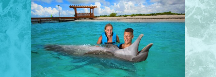 Delphinus weather in Cancun and Riviera Maya