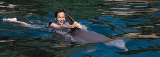 ¡Vive un nado con delfines perfecto para niños!