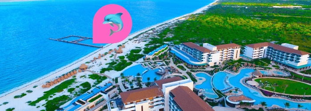 Los 3 mejores lugares para nadar con delfines en México