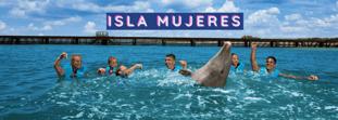 ¿Dónde nadar con delfines si estás vacacionando en Isla Mujeres?