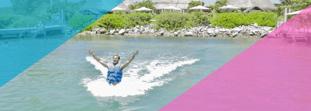 ¿Dónde nadar con delfines si estás vacacionando en Playa del Carmen?