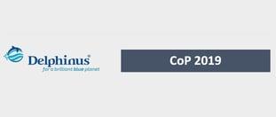 Delphinus Reporte de sostenibilidad COP 2019