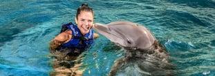¿Cómo puedes obtener un descuento en tu nado con delfines?