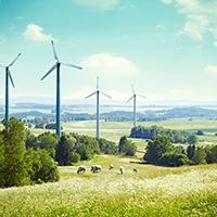 Wind Turbines on Rural Land.jpg