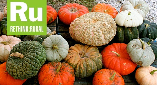 Picking the Perfect Pumpkin: A guide to 17 heirloom pumpkin varieties