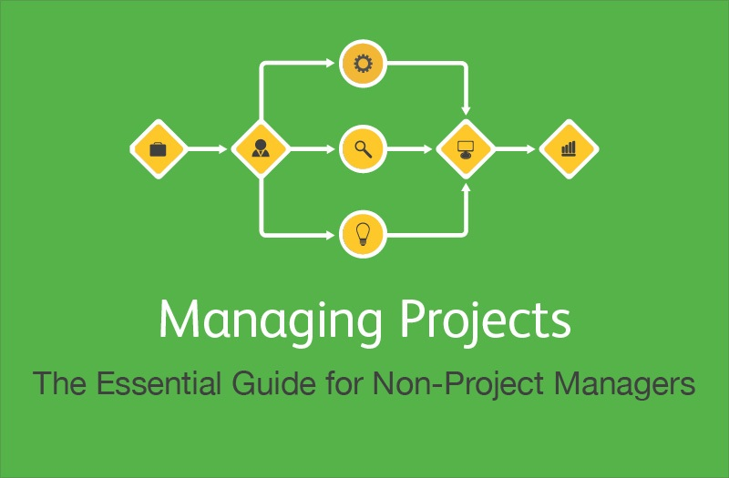 Managing_Projects_Essential_Guide_for_Non_PMs_cover