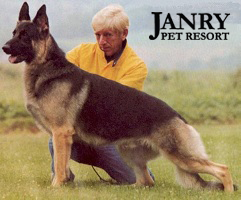 pet resort german shepherd breeder