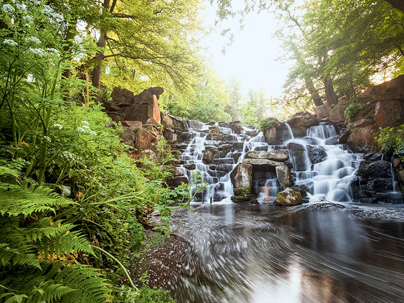 The picturesque Cascade waterfall at Virginia Water lake. Banner image: Windsor Great Park's Long Walk to Windsor Castle. Photographs: Getty Images