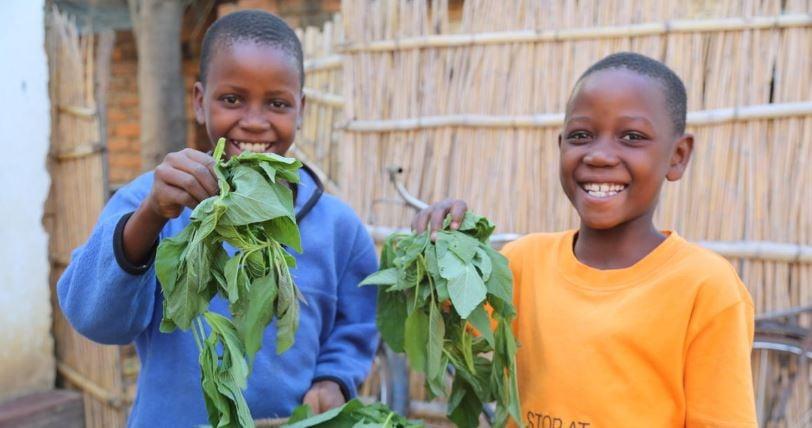 Malawi - 2 kids with greens