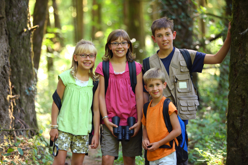 summer camps activities after divorce